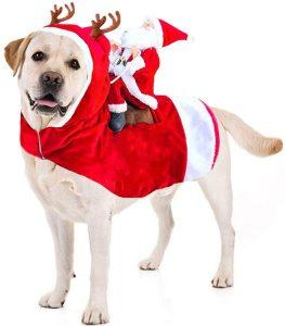 disfraces de navidad para perros_
